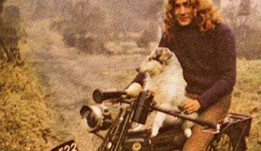 Collie,Strider,Led Zeppelin,Robert Plant,Music
