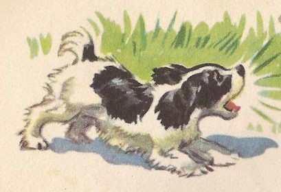 Spot,Cocker Spaniel,Williams S. Gray,Zerna Sharp