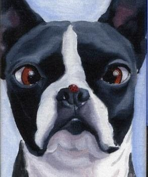 Bloodhound,German Shepherd Dog, Beagle,nose print, Canadian Kennel Club,rhinarium