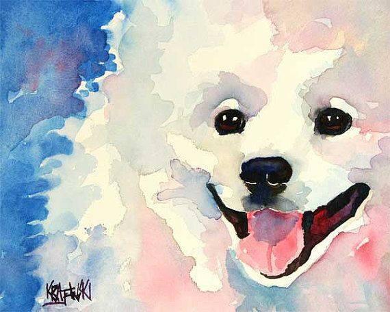 American Eskimo Dog,spitz,Keeshond,Pomeranian,Dog Beautiful,nickname