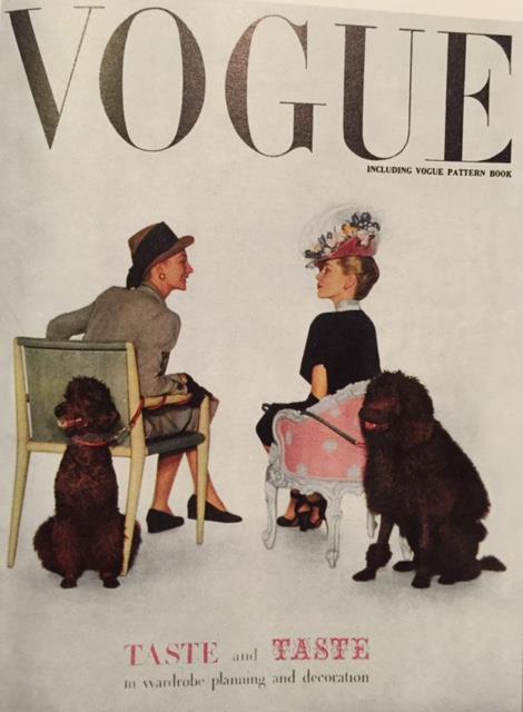Poodle,Vogue,Art