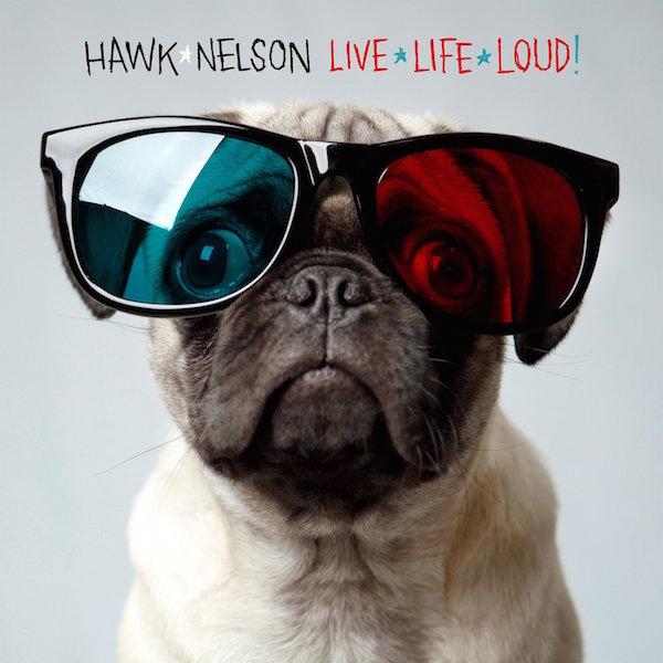 Pug,Hawk Nelson,Jason Dunn,music,rock,art