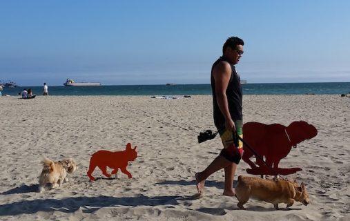 public art,Rosie's Dog Beach,Karena Massengill