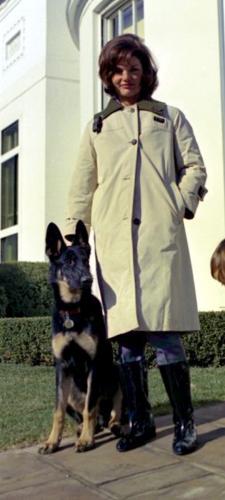 King Cole,German Shepherd Dog,Calvin Coolidge,King Tut,Herbert Hoover,US President,Franklin Roosevelt,John F. Kennedy
