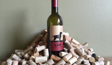 wine,Labrador Retriever