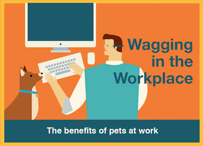 work, dogs