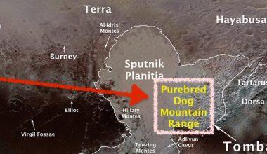Pluto,Star Trek,SETI Institute,Kerberos,
