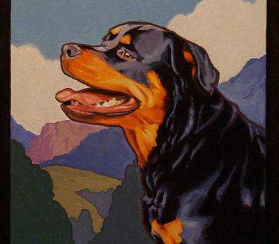 Rottweiler, herding dog,herding title,Roman Cattle Droving Dog,Greater Swiss Mountain Dog,Metzgerhund