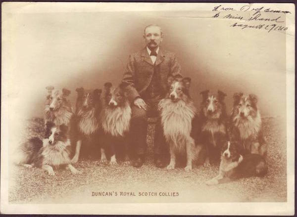 Collie,Scotch Collie,J. Richard McDuffie,Old Cockie,OTSC, Old Time Scotch Collies