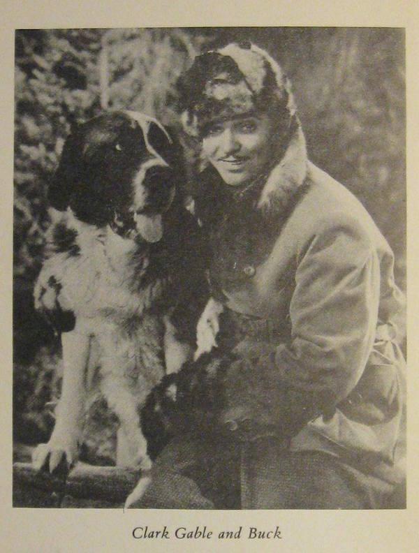 Cairn Terrier,movies,Toto,Saint BernardThe Call of the Wild,Hollywood Dog Training School,Carl Spitz,Clark Gable,Rick Karl,
