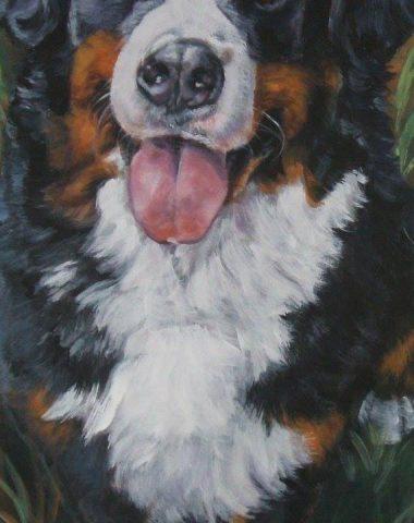 Bernese Mountain Dog,inverted cross,marking,coat,color