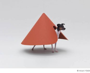 Japanese Terrier,Nippon Design Center,Hara Design Institute,design