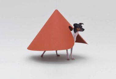 Japanese Terrier,Nippon Design Center,Hara Design Institute,design