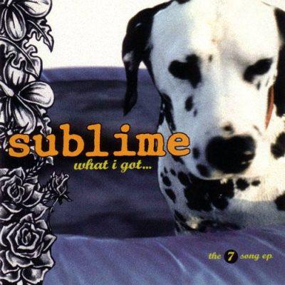 Lou Dog,Sublime,music,Dalmatian