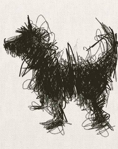 Puli,novels,literature,The Deathbird,A Boy and His Dog,Harlan Ellison