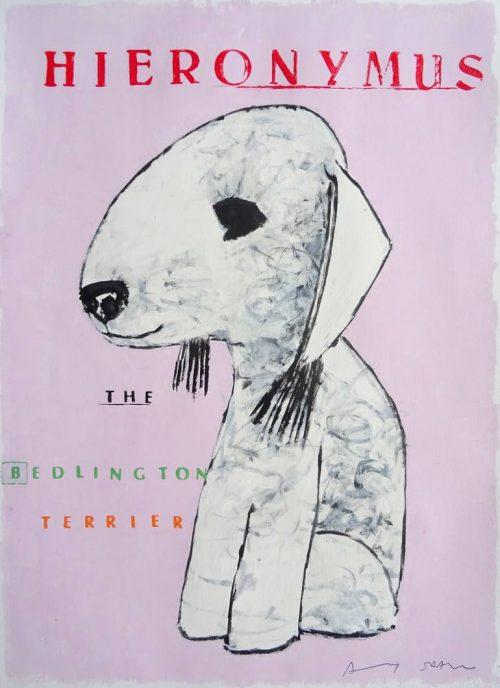 Bedlington Terriers Groomed For A Job