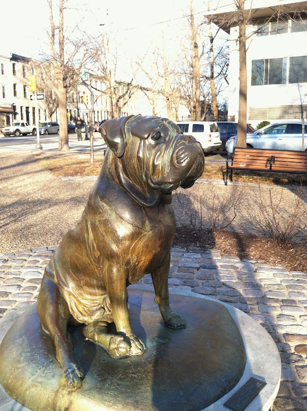 bullmastiff,Victoria Davila,Gamekeeper's Night Dog,statue,bronze,art,Philadelphia,Delaware Valley Bullmastiff Club