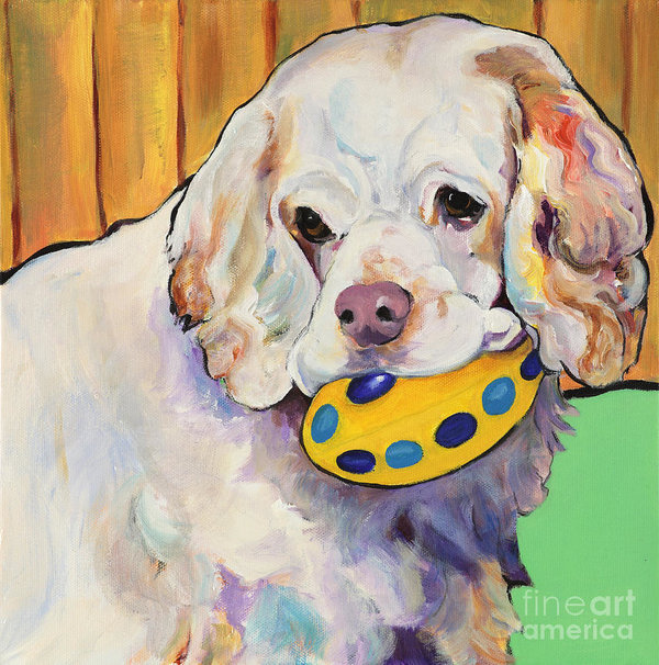 Clumber Spaniel,retired gentleman's spaniel,gentleman's shooting dog