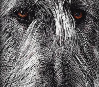 Irish Wolfhound,names,National Purebred Dog Day