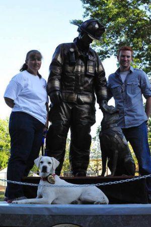Arson dog, Labrador Retriever,accelerant detection canine