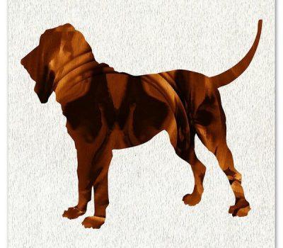 Bloodhound,name,history,limer,St. Hubert,Sleuth Hound,Talbot,Southern Hound,William of Palerne