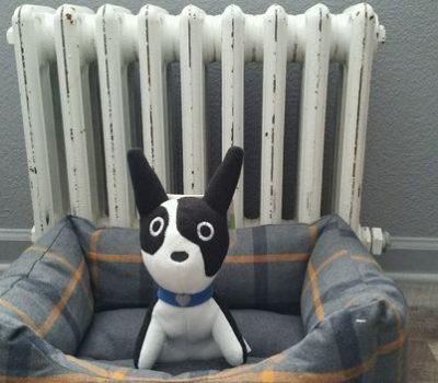 Boston Terrier,Mr. Bonejangles,