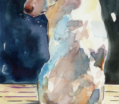 Labrador Retriever,Earl of Malmesbury,St. John's dogs,Newfoundland. St. John's Water Dog