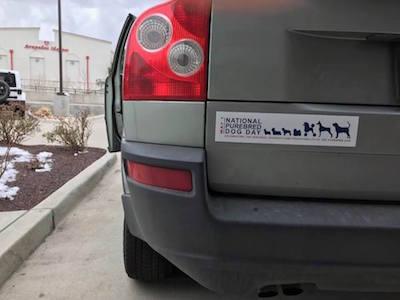 Magnetic Bumper sticker