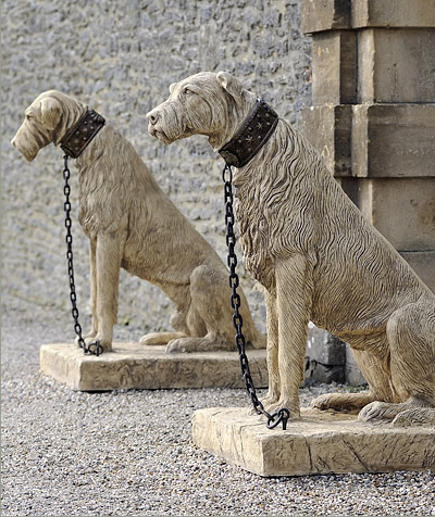 Irish Wolfhound, Irish Collie,Sétanta,Cú Chulainn,legend,mythology,
