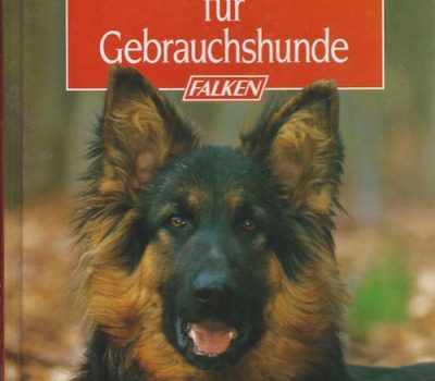term,Gebrauchshund,working,herding,hunting,search and rescue
