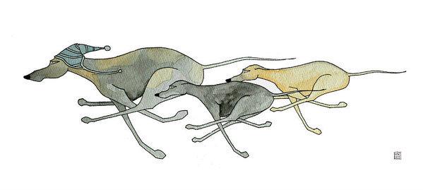 Structure,legs,sighthound,ratio