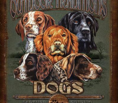 blinking,hunting dog,bird dog,