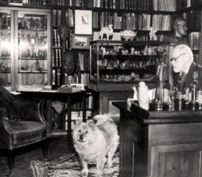 Sigmund Freud,Jofi,Chow Chow,Pet therapy,Boris Levinson,Samuel A. Corson