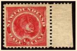 newfoundland,stamp,postage stamp,Lassie