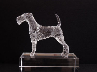 Albert Payson Terhune,Irish Terrier,Collie,William Graham