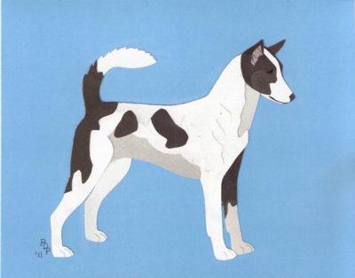 Canaan Dog,Proto-dog