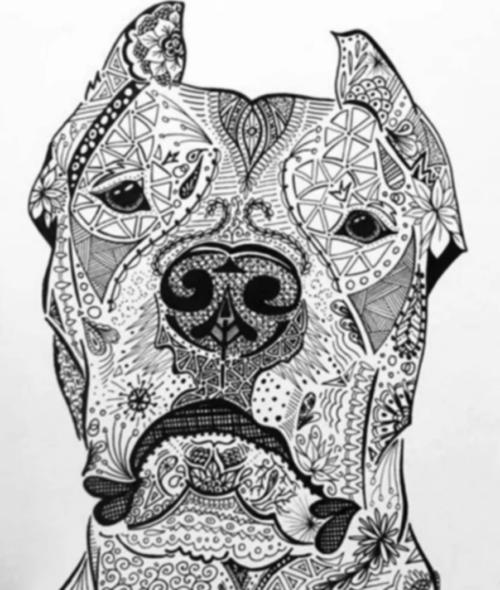 Argentine Dogo,Argentine Mastiff, Dogo, Dogo Argentino, Antonio Nores Martínez ,Agustín Nores Martínez