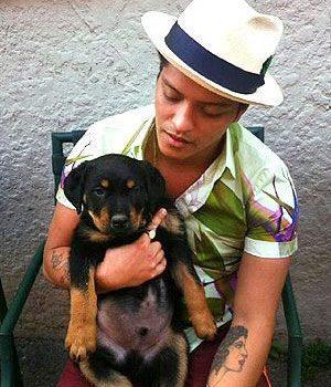 Rottweiler,Bruno Mars, Uptown Funk,music,lip synch challenge