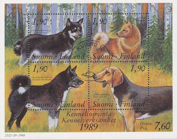 Dog Fancy,Finland, Labrador Retriever, Finnish Lapphund,