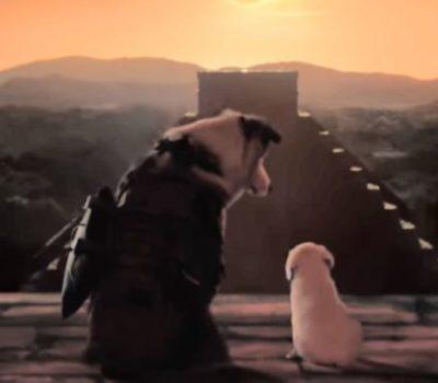 Lara Croft,commercial,advertising,Australian Shepherd,Tomb Raider,Labrador Retriever