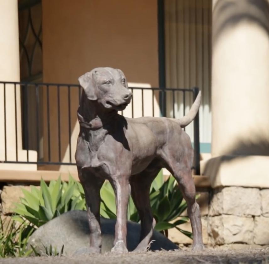 Labrador Retriever,Dog Statue House,statue,Santa Barbara