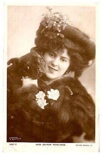 French Bulldog,Frenchie,Gaynor Rowlands,postcard,French postcard