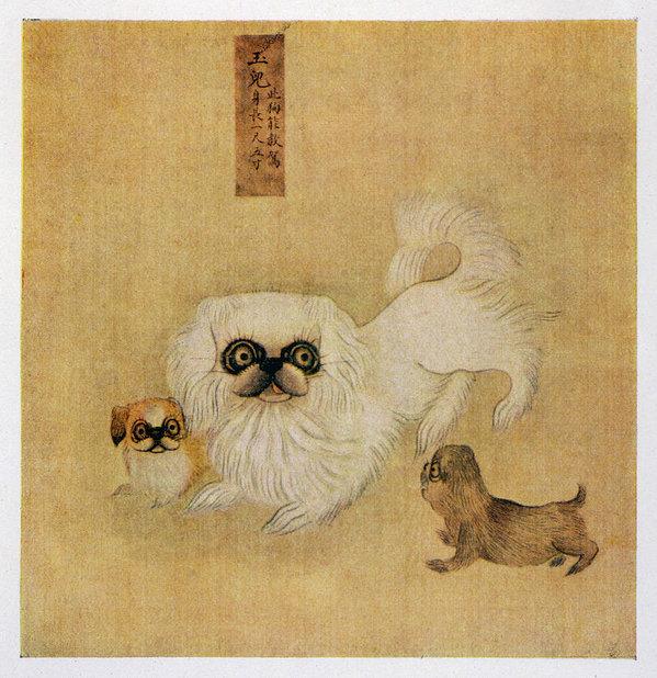 color,Dowager Empress Tzu Hsi,history,Pekingese