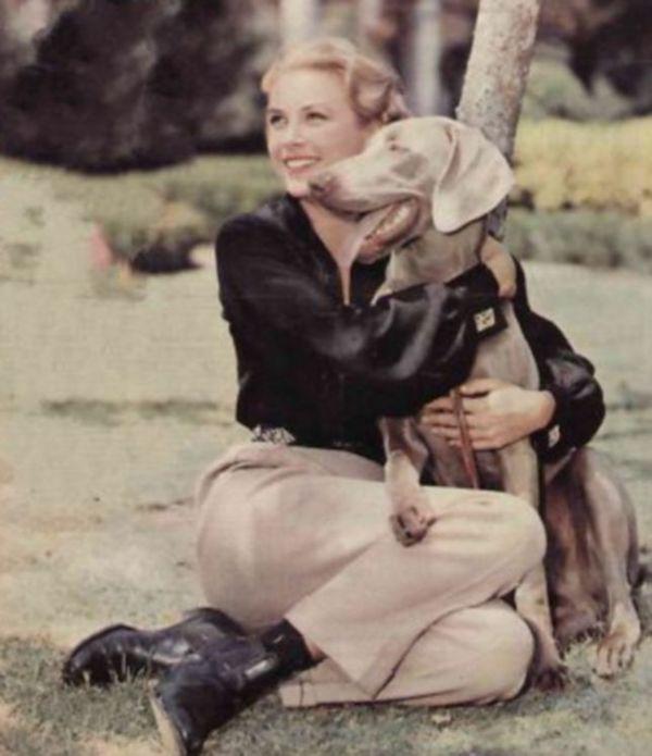 Grace Kelly, Poodle, Weimaraner,