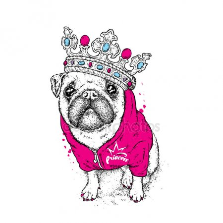 Pug,Kelly Osbourne,Kelly Brook