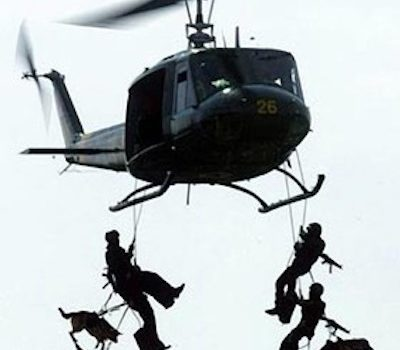 Belgian Malinois, Military,war dog,police dog, Cairo, Bin Laden,
