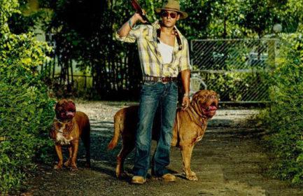 Bollywood, Dogue de Bordeaux,Labrador Retriever,Saint Bernard, Napoleon Mastiff,Chaiyya Chaiyya,Salman Khan
