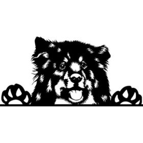 Nickname,Finnish Lapphund, Lappie, Lappari