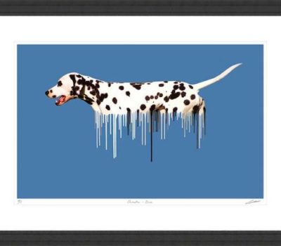 Dalmatian,George Washington,Madame Moose,coach dog,
