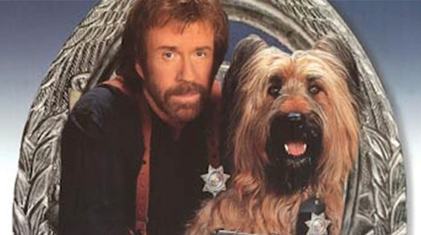 Briard,TV,Film,Movies,Chuck Norris,My Three Sons, Top Dog